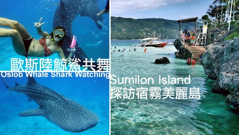 奧斯陸鯨鯊潛水,宿霧旅遊推薦,必玩景點