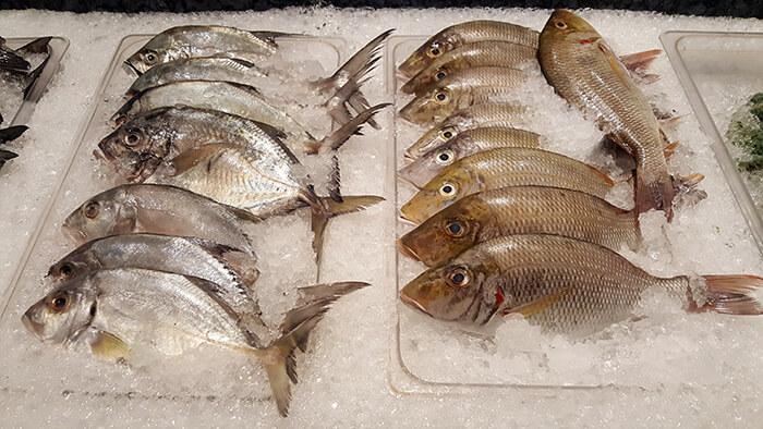 seafood-city-010