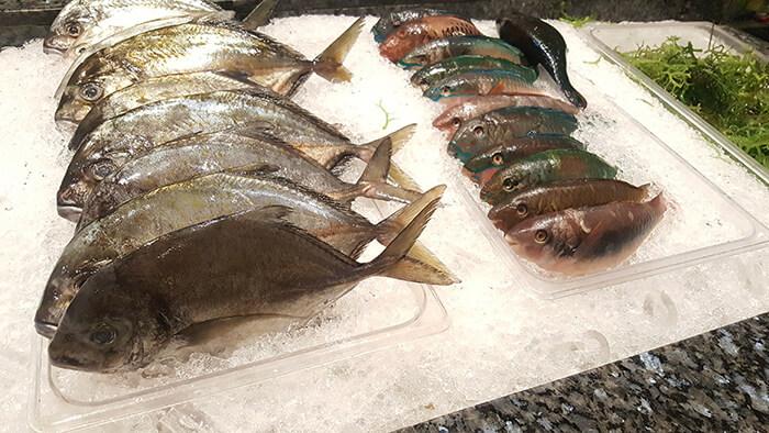 seafood-city-043
